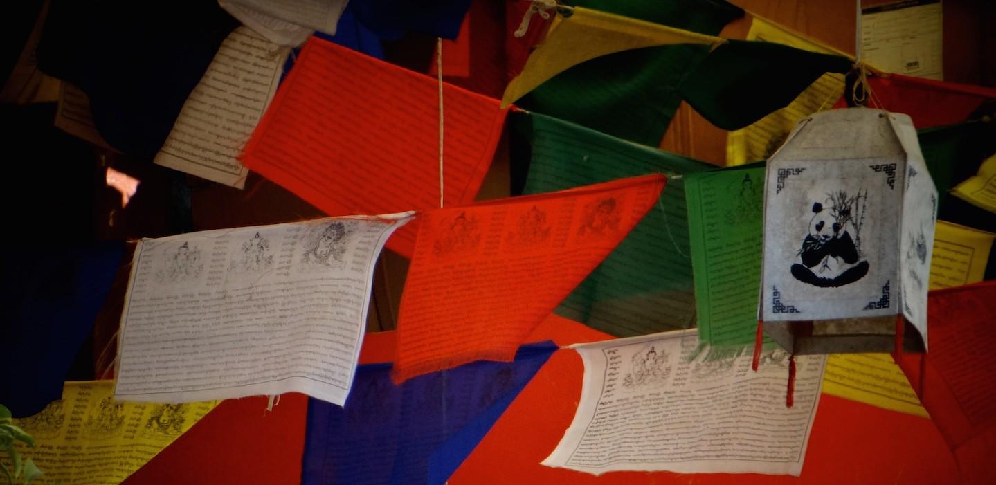 McLeod Ganj Himachal Pradesh Dharamsala Tibétain Dalai Lama