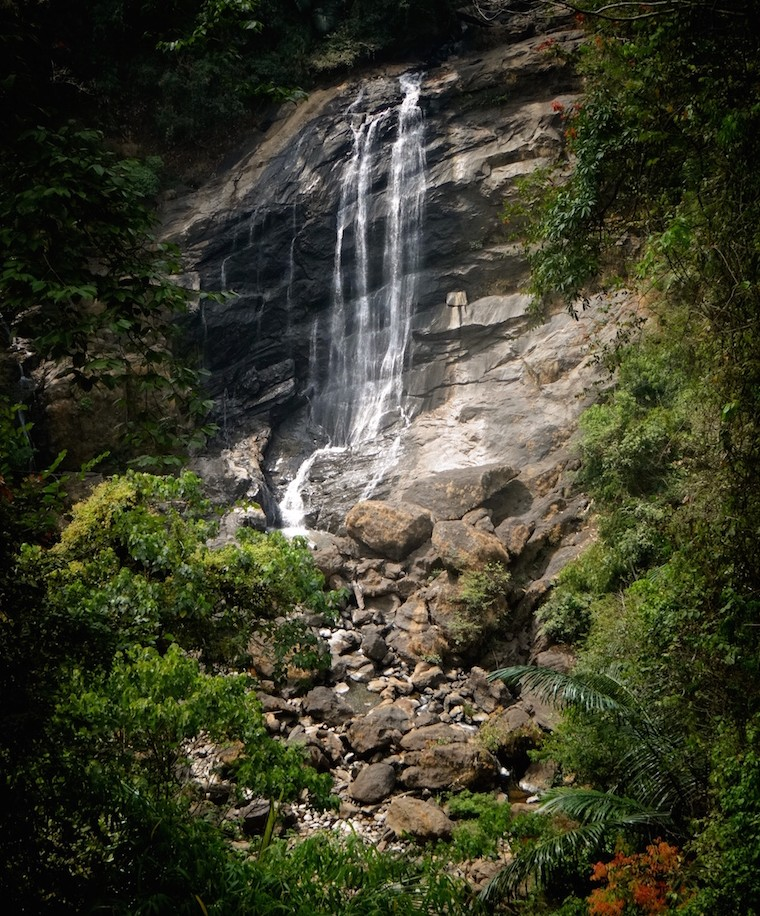 Munnar Cascade