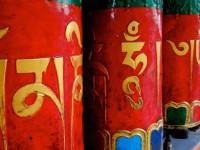 McLeod Ganj : Sur les traces du Dalai Lama !
